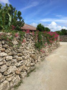 竹富島の石垣と赤い屋根の写真