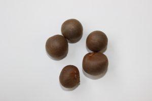 チャの種の写真