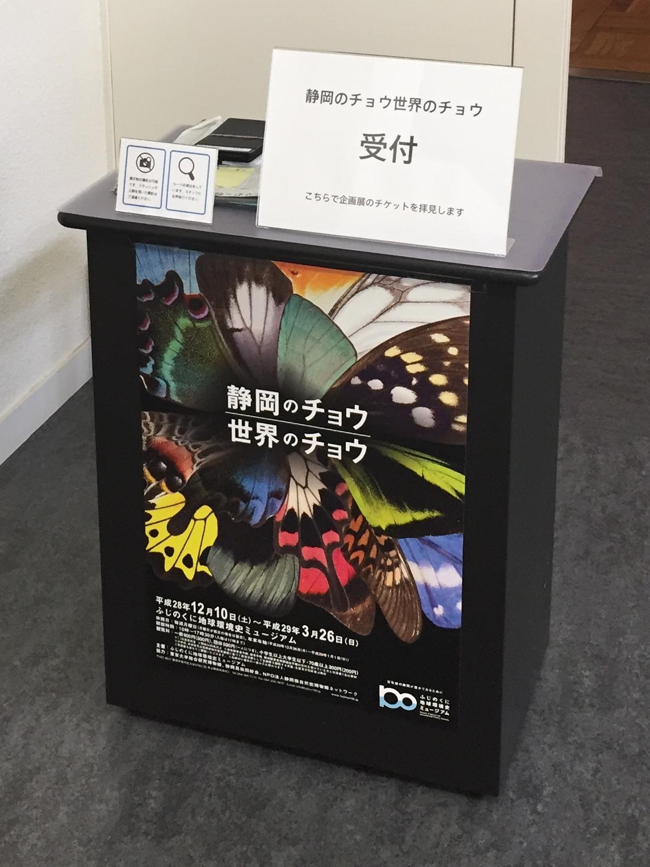 ふじのくに地球環境史ミュージアム 企画展「静岡のチョウ 世界のチョウ」の写真