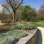 ジュネーブの植物園の香りと感触の庭の写真