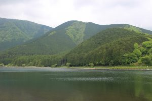 田貫湖の写真
