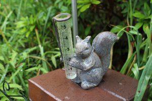 雨量計(レインゲージ)の写真