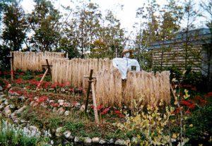 2004年浜名湖花博の水車小屋のある庭の写真