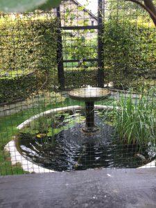 Le jardin de l'ouïe(聴覚の庭)の写真