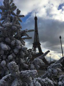 エッフェル塔とツリーの写真