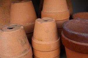 植木鉢の写真