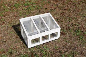 ミニ温室の写真