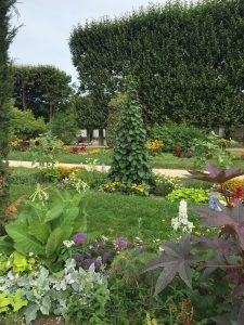 パリ植物園の整形式庭園の写真