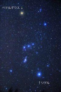 オリオン座の写真