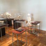 マジメかつシュール。「ふじのくに地球環境史ミュージアム」の常設展
