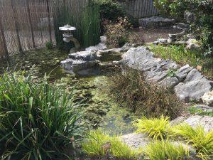 ジュネーブの植物園の池と石灯籠の写真