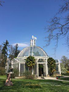 ジュネーブの植物園の温室の写真