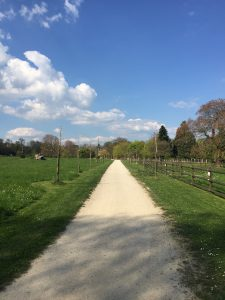 ジュネーブの植物園の香りと感触の庭への道の写真