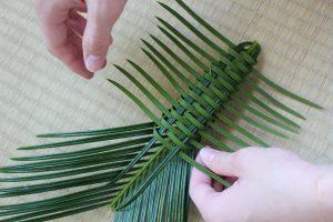 ソテツの虫かごを作る写真