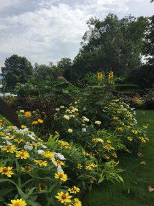ペルル・デュ・ラック公園の真珠の庭(夏)の写真