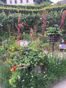 Le jardin du goût(味覚の庭)の写真