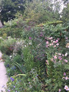 Le jardin de la vue(視覚の庭) の写真
