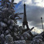 パリのシンプル シックなクリスマスツリー