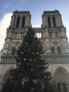 ノートルダム大聖堂とツリーの写真