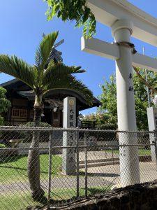 ハワイ出雲大社のヤシの木