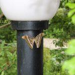 蝶は大好きだけど蛾は絶対ムリ!庭でシンジュサンを目撃する