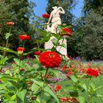 スイスの庭は虫がいなくて残念だけどリスがいる!