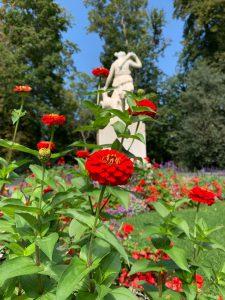 スイスの庭